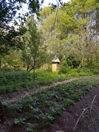 Potager et toilettes sèches - Les Jardins du Marais