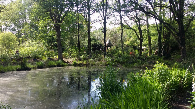 Marais - Les Jardins du Marais
